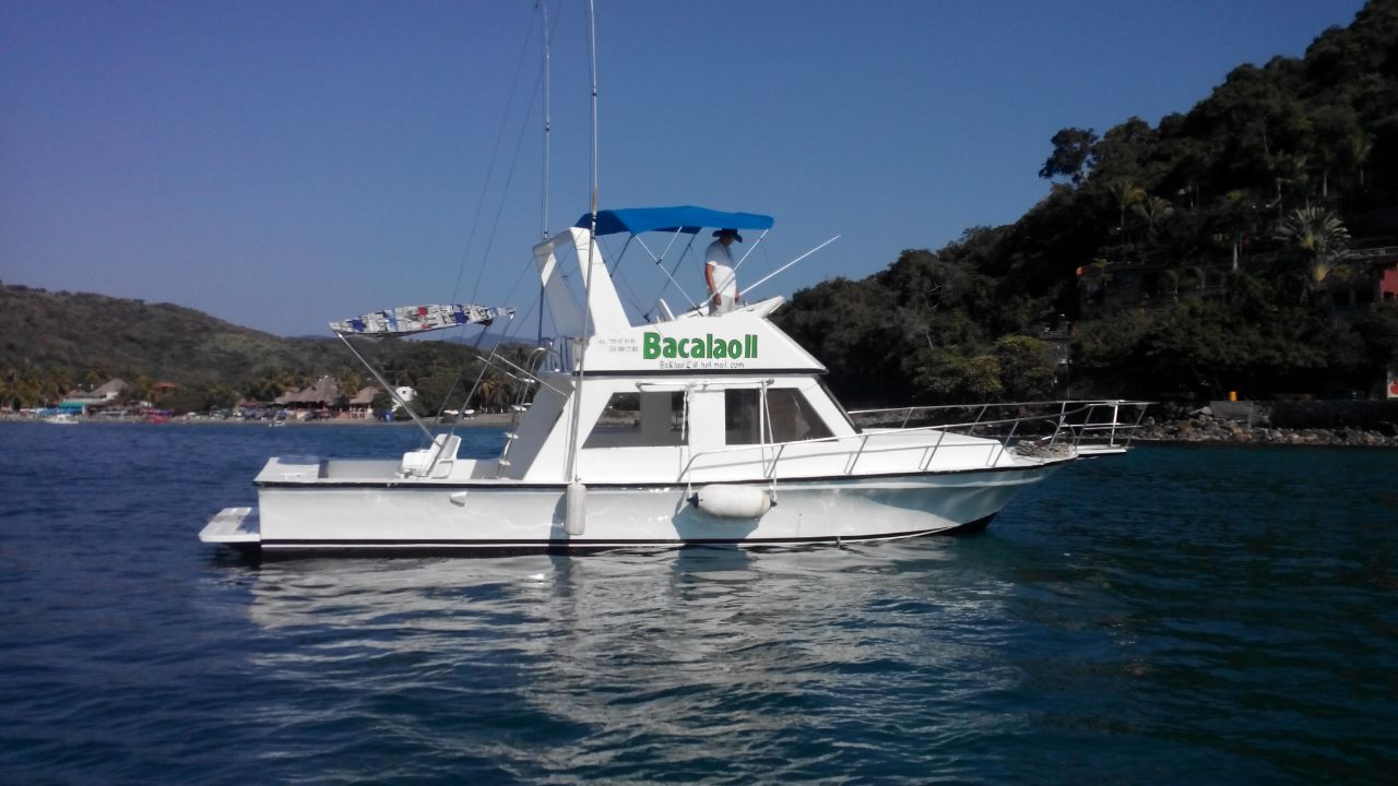 Selected fishing charters in Ixtapa Zihuatanejo. Fishing for black and blue marlin, sailfish, mahi mahi in Ixtapa Zihuatanejo. Inshore fishing for pretty, grouper, mackerel, black tuna in Ixtapa Zihuatanejo. Deep Sea Fishing in Ixtapa Zihuatanejo. Fishing Charters Daily Living From Zihuatanejo Pier. Fishing Charters Daily Living From the Marina of Ixtapa. Sharing Fishing Boats in Ixtapa Zihuatanejo